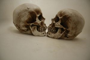 two skulls by DangerouslyStock