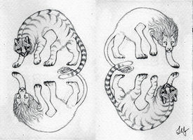 Tigers And Lions by leopardes