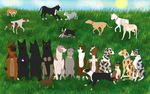 23 Dog Play Date by Acadiana
