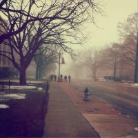iPhone Snap: Students in the Mist by Due-South