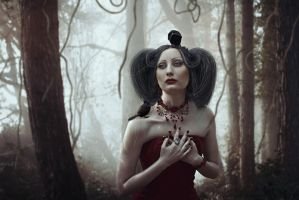 Favourites of the Forest by passion-aesthete
