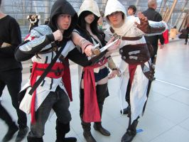 LBM 2013 #4 Assassin's Creed by Drawer88