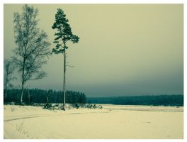 The Cold Landscape by alleloveart