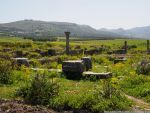 Volubilis by Orhi