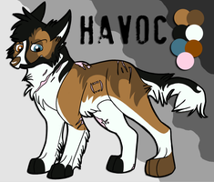 Havoc Reference by MokiHunter