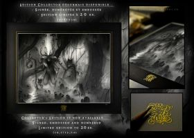 Collector's Edition prints are now available... by Olivier-Villoingt