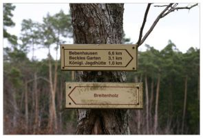 Forest Sign 2 by neilwightman