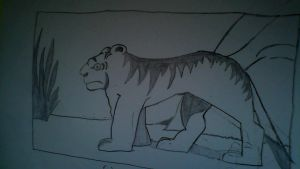 Male feline lion drawing by SuperSayian5Naruto by SuperSayian5Naruto
