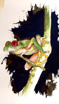 Grenouille - Frog by LaureCacouault