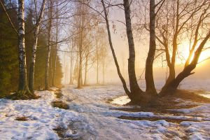 The Sound of Melting Snow by DeingeL