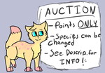 Auction! by fox--butts