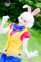 The White Rabbit by CriminalViolet