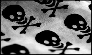 Skulls by metallicatrollet