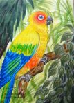 Sunny bird (ACEO) by Woodswallow