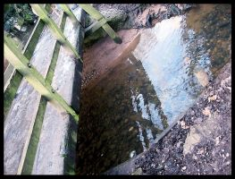 Staffordshire Brook by ShanghaiBoo
