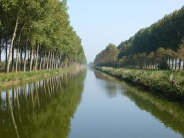 The Damme Canal by mediast