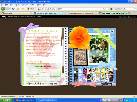 Notebook Gaiaonline Profile by xlilhammx