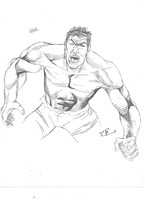 Hulk Smash! (2) by TEhopefulcomicartist