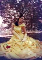 Belle - Disney Princesses by theredviper