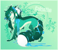 Calanthe+::. by Makime