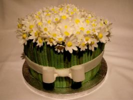 Bouquet of daisies cake. by MissMarysCakes