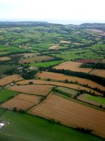 Patchwork Fields by dl-p
