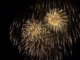 New Years Fireworks- 1 by EBSpurlin