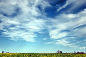 Cloudy Sky by eyefish