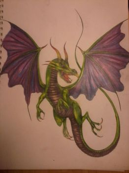 the green dragon by dovesfly25