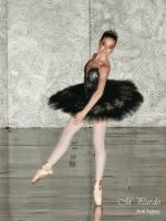 Black tutu costume onstage by arcticorset