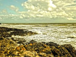 Rough Seas at Rest Bay Coastal Path June 2012 by welshrocker