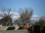Snow in So. Cal 1 by Quiet2