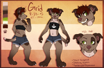 Grid 2014 ref+ Revamp by Spaggled