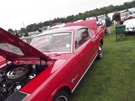 1965 Ford Mustang 1 by JS92