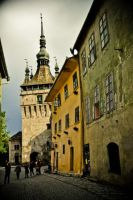 Old Sighisoara by dianora