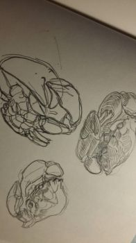Crab sketch  by kotleta