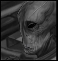 Mordin - Panel by ErsbethShadowsong