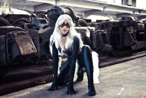 BlackCat - Spiderman Cosplay 3 by Yukilefay