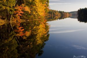 New England Fall by shiverfix