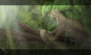 Always be a Fossa by Kocurzyca