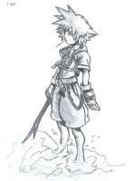 Sora Kingdom Hearts by superninjaturkey