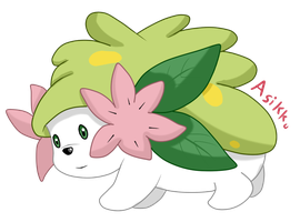 My First Shaymin by Asikku