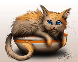 Kitten In Bowl by Grypwolf