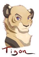 Tigon headshot by tigon