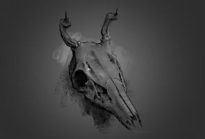 Deer Scull by PLyczkowski