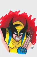Wolverine Headshot Colored by RichBernatovech