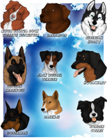 My favourite dog breeds by Freewolf7