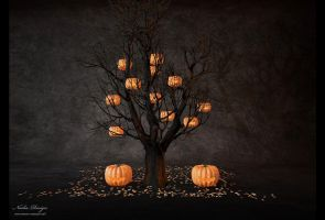 pumpkin tree by Nadia-design