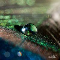 Emerald by Silver-Dew-Drop