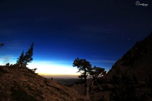 Starry Morning by Dugwin